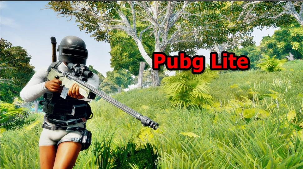 Pubg lite for Pc Download Free Full Version 2019